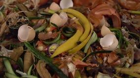Οργανικά απόβλητα κουζινών για το λίπασμα με ποικίλα τα περίσσευμα τρόφιμα απόθεμα βίντεο