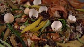 Οργανικά απόβλητα κουζινών για το λίπασμα με τα λαχανικά, τα φρούτα και τα ποικίλα τρόφιμα απόθεμα βίντεο
