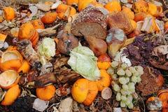 Οργανικά απόβλητα στοκ εικόνες