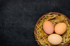 Οργανικά αυγά με τη διαστημική περιοχή αντιγράφων Στοκ Φωτογραφία