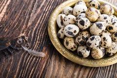 Οργανικά αυγά ορτυκιών στοκ φωτογραφία με δικαίωμα ελεύθερης χρήσης