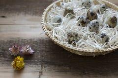 Οργανικά αυγά ορτυκιών Στοκ Φωτογραφίες