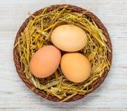 Οργανικά αυγά στη φωλιά Στοκ εικόνες με δικαίωμα ελεύθερης χρήσης