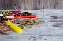 Οργανικά καρυκεύματα στα ζωηρόχρωμα κουτάλια Καλή επιλογή των φρέσκων καρυκευμάτων Στοκ εικόνα με δικαίωμα ελεύθερης χρήσης