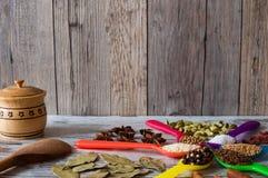 Οργανικά καρυκεύματα στα ζωηρόχρωμα κουτάλια Μαύροι πιπέρι, καρδάμωμο, κορίανδρο, σπόροι μουστάρδας, φύλλο κόλπων και άλλο Στοκ Εικόνες