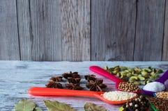 Οργανικά καρυκεύματα στα ζωηρόχρωμα κουτάλια, τον ξύλινο αλατισμένο δονητή και το ξύλινο κουτάλι Καλή επιλογή των φρέσκων καρυκευ Στοκ Εικόνες