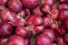 Οργανικά κρεμμύδια κρεμμυδιών που πωλούνται στην τοπική αγορά αγροτών στοκ εικόνα