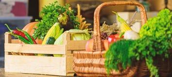Οργανικά λαχανικά καλαμποκιού κολοκύθας συγκομιδών συγκομιδών φθινοπώρου Homegrown λαχανικά Φρέσκα οργανικά λαχανικά στο ψάθινο κ στοκ εικόνα