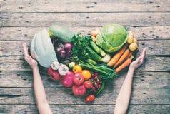 Οργανικά λαχανικά κατατάξεων χεριών υγείας θηλυκά Στοκ Εικόνα