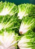 οργανικά λαχανικά φρέσκο ιαπωνικό λαχανικό σαλάτας τροφίμων Μαρούλι για την κατασκευή μιας σαλάτας Στοκ Εικόνα
