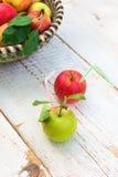 Οργανικά μήλα στο καλάθι, υγιής έννοια τρόπου ζωής στοκ εικόνες με δικαίωμα ελεύθερης χρήσης