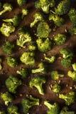 Οργανικά πράσινα ψημένα Florets μπρόκολου Στοκ εικόνες με δικαίωμα ελεύθερης χρήσης