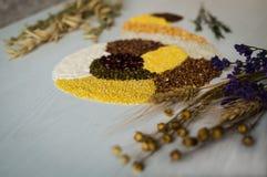 Οργανικά σιτάρια και δημητριακά για την υγεία σας Στοκ Εικόνα