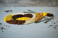 Οργανικά σιτάρια και δημητριακά για την υγεία Στοκ Φωτογραφία