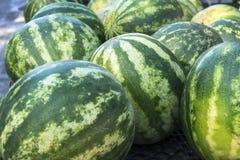 Οργανικά φρούτα και λαχανικά στην αγορά αγροτών: Πάρκο του Wilson, Τ Στοκ Εικόνες