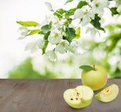 Οργανικά φρούτα της Apple στην ξύλινη σύσταση Στοκ εικόνα με δικαίωμα ελεύθερης χρήσης