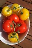 Οργανικές ντομάτες Στοκ Φωτογραφίες