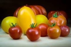 Οργανικές φυσικές ντομάτες, διαφορετικές χρώματα και μορφές στοκ εικόνες