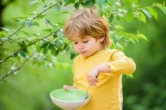 Οργανική διατροφή r Συνήθειες διατροφής Κουτάλι λαβής παιδιών Το μικρό παιδί απολαμβάνει το σπιτικό γεύμα στοκ εικόνα