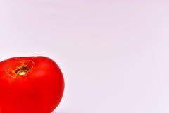 οργανική ντομάτα Στοκ Φωτογραφίες