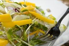 οργανική σαλάτα μάγκο πρα&s Στοκ Εικόνες
