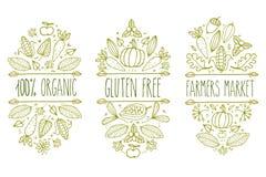 Οργανική τροφή, γλουτένη ελεύθερη, λογότυπο επιλογών αγοράς αγροτών Συρμένο χέρι διανυσματικό τυπογραφικό στοιχείο σκίτσων Ετικέτ