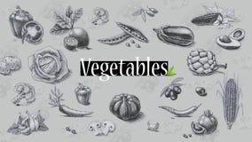 Οργανική τροφή Λαχανικά λευκό δέντρων μολυβιών σχεδίων ανασκόπησης Στοκ Φωτογραφία