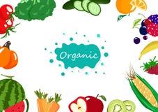 Οργανική τροφή, λαχανικά και φρούτα, υγιεινή διατροφή ισορροπίας συλλογής τροφίμων, δημιουργικό διάνυσμα υποβάθρου αφισών εμβλημά ελεύθερη απεικόνιση δικαιώματος