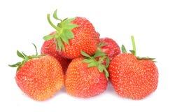 οργανική φράουλα Στοκ Εικόνες
