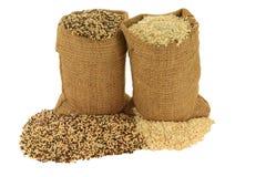 Οργανικοί Quinoa σπόροι και νιφάδες Στοκ Εικόνα