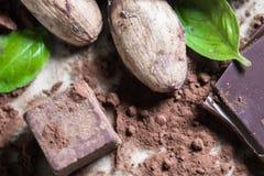 Οργανικός ακατέργαστος σπόρος φασολιών κακάου με τους κύβους επιδορπίων καραμελών σοκολάτας, σκονών και κακάου με το πράσινο φύλλ στοκ φωτογραφίες