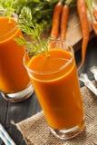 Οργανικός ακατέργαστος χυμός καρότων στοκ εικόνα