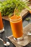Οργανικός ακατέργαστος χυμός καρότων στοκ φωτογραφίες με δικαίωμα ελεύθερης χρήσης