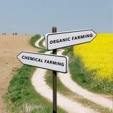 Οργανικός εναντίον της χημικής καλλιέργειας στοκ εικόνες με δικαίωμα ελεύθερης χρήσης