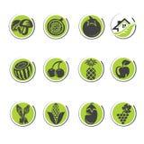 Οργανικός καθορισμένος τόμος 1 Στοκ εικόνες με δικαίωμα ελεύθερης χρήσης