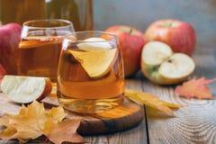Οργανικός μηλίτης ή χυμός της Apple σε έναν ξύλινο πίνακα Δύο γυαλιά με τα φύλλα ποτών και φθινοπώρου στο αγροτικό υπόβαθρο στοκ φωτογραφία