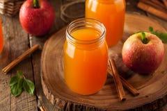 Οργανικός πορτοκαλής μηλίτης της Apple Στοκ φωτογραφίες με δικαίωμα ελεύθερης χρήσης