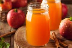 Οργανικός πορτοκαλής μηλίτης της Apple Στοκ Εικόνα