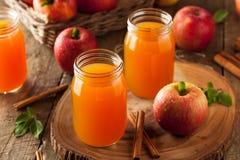 Οργανικός πορτοκαλής μηλίτης της Apple Στοκ Εικόνες