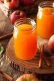 Οργανικός πορτοκαλής μηλίτης της Apple Στοκ Φωτογραφία
