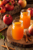Οργανικός πορτοκαλής μηλίτης της Apple Στοκ εικόνα με δικαίωμα ελεύθερης χρήσης