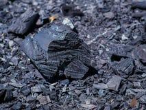 Οργανικός φυσικός μαύρος ξυλάνθρακας μμένο δάσος στοκ εικόνες με δικαίωμα ελεύθερης χρήσης