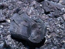 Οργανικός φυσικός μαύρος ξυλάνθρακας μμένο δάσος στοκ εικόνα με δικαίωμα ελεύθερης χρήσης