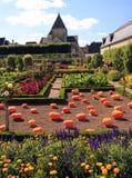 Οργανικός φυτικός κήπος Στοκ εικόνες με δικαίωμα ελεύθερης χρήσης