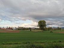 Οργανικό αγρόκτημα άνοιξη στοκ φωτογραφία με δικαίωμα ελεύθερης χρήσης