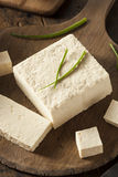 Οργανικό ακατέργαστο Tofu σόγιας Στοκ φωτογραφία με δικαίωμα ελεύθερης χρήσης