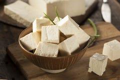 Οργανικό ακατέργαστο Tofu σόγιας Στοκ Φωτογραφία