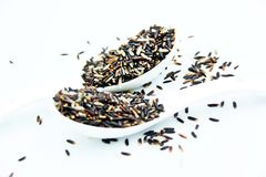 Οργανικό καφετί ρύζι στα κουτάλια Στοκ Εικόνες