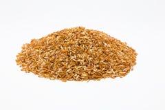 Οργανικό καφετί ρύζι στο λευκό Στοκ Φωτογραφίες