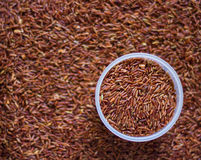 Οργανικό καφετί ρύζι Στοκ Φωτογραφίες